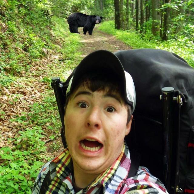 Селфи с медведями. Они думают, что это шутки?