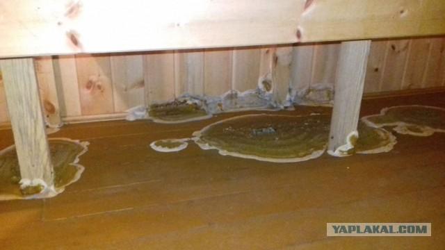 Как я баню ремонтировал
