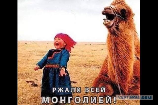 Ржали всей Монголией!