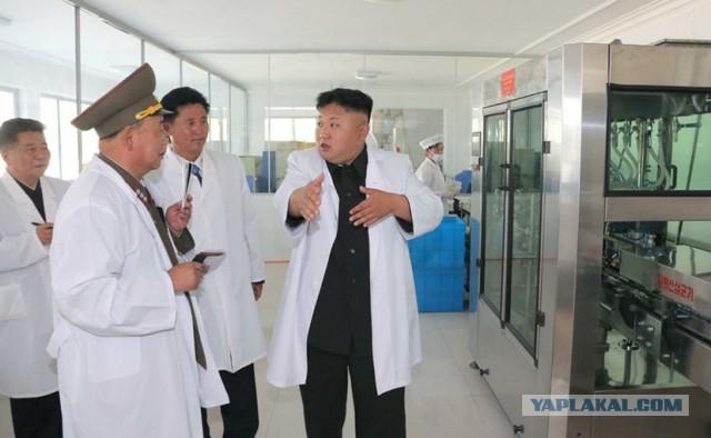 В Северной Корее создали таблетки от рака