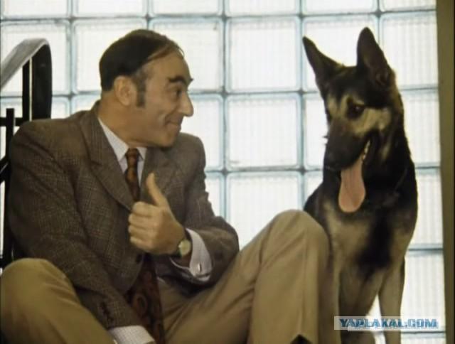 """Саакашвили предлагал: """"Давай ты будешь премьером, а я - первым вице-премьером"""", - Аваков - Цензор.НЕТ 6989"""