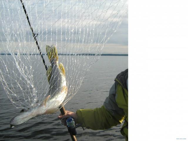 философия для рыбака