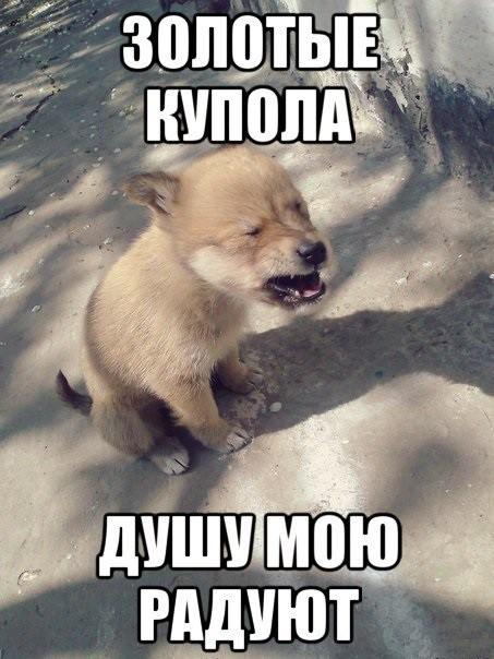 """""""Блатняк"""""""