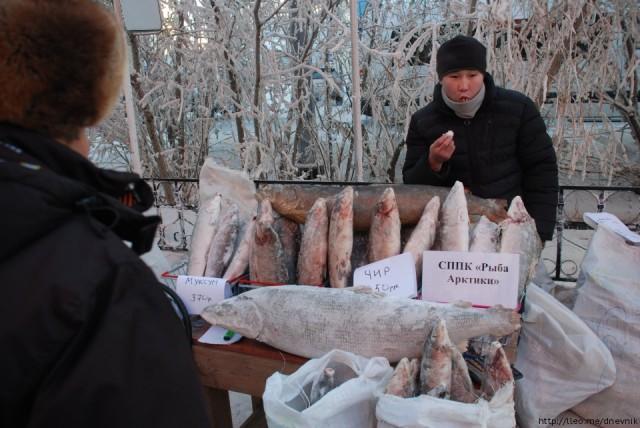 Якутия: про рыбу