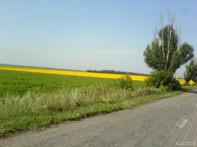 Один день из жизни Геодезиста!)))