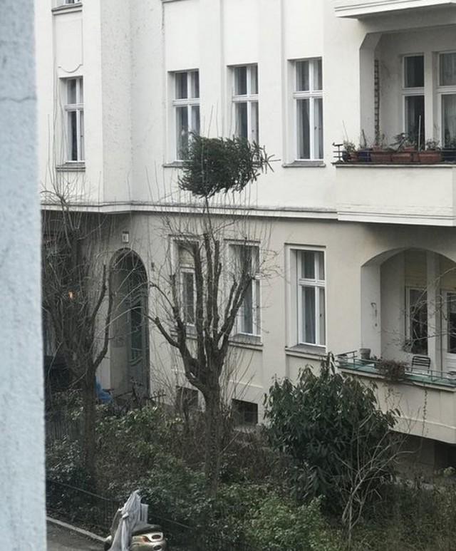 Соседи, которым впору открывать представительство ада у себя дома