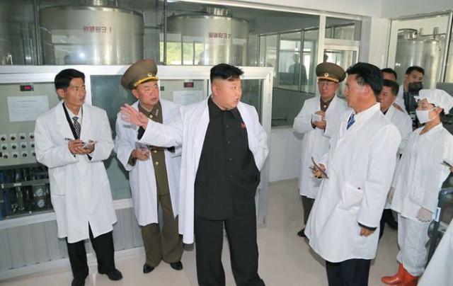 Ким Чен Ын проинспектировал водочное производство