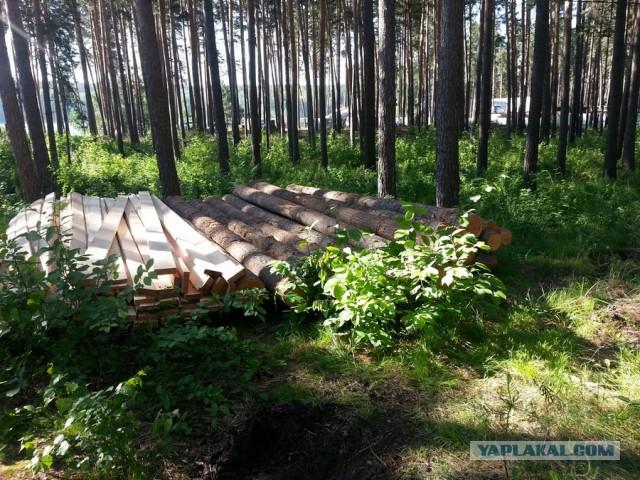 Строительство рубленной бани из кедра