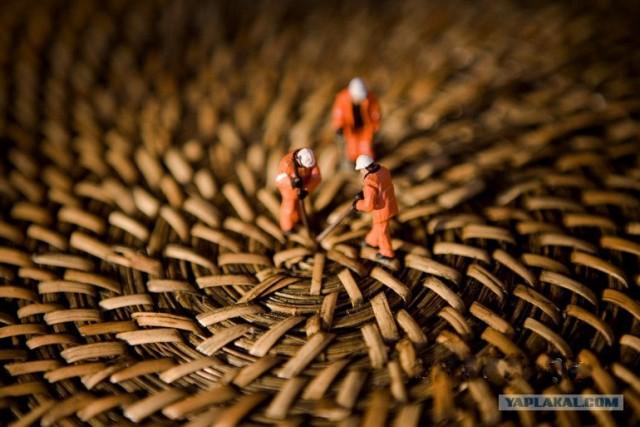Жизнь микрочеловечков (32 фото)