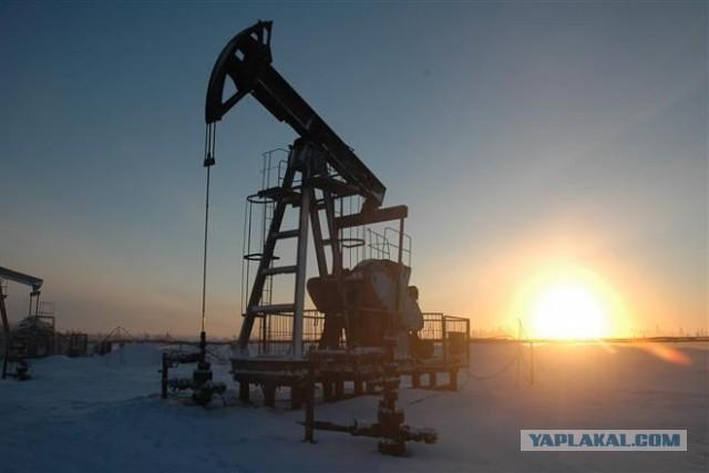 Конец «нефтяной эпохи»? Создана альтернатива нефти
