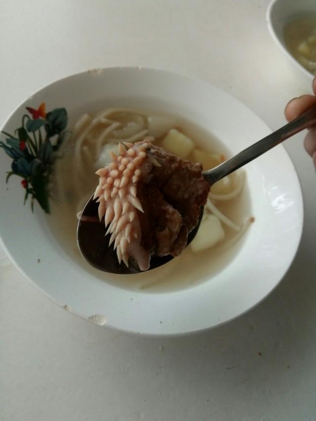 В Зауралье в школьном супе нашли странный кусок мяса с белыми отростками