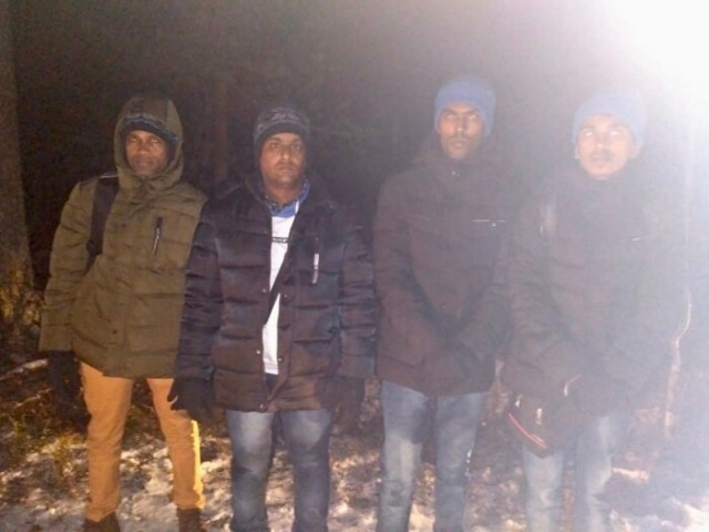 Мошенник поставил в выборгском лесу пограничные лжестолбы и за деньги якобы перевёл в Финляндию четверых уроженцев Азии