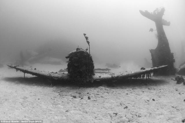 Затопленые самолёты