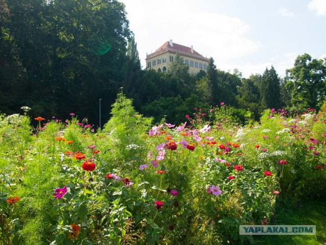 Прага и Дрезден глазами российского туриста