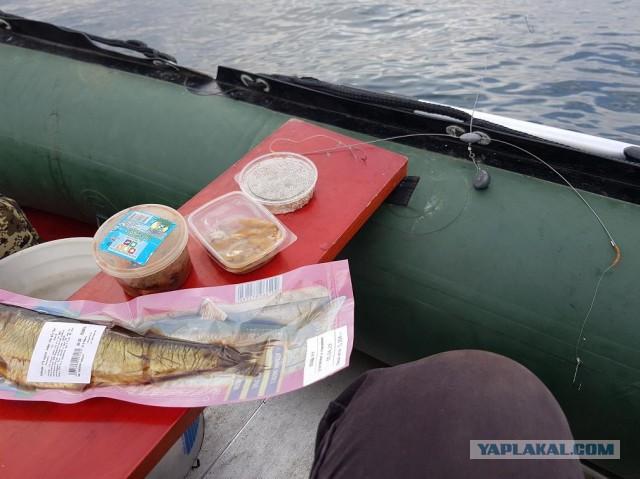 Пока праздники – метнемся на рыбалочку…