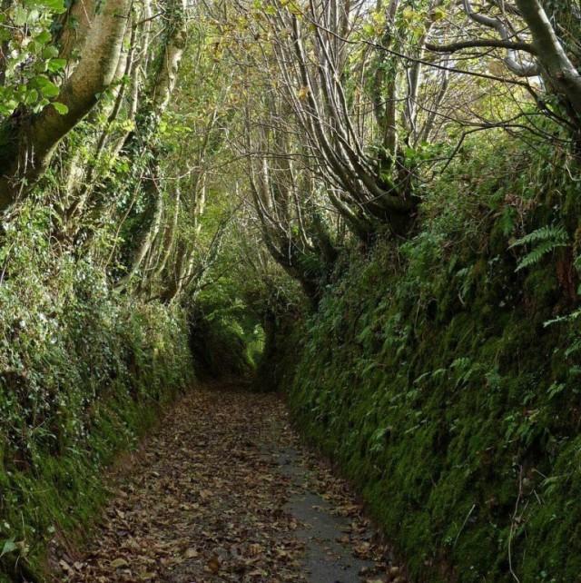 Ушедшие под землю древние дороги Европы.