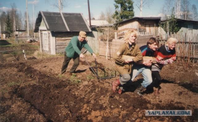 Путин утвердил закон о садоводческом и огородническом товариществах