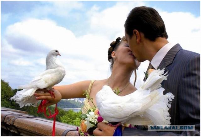 Россиянам могут запретить жениться более трех раз