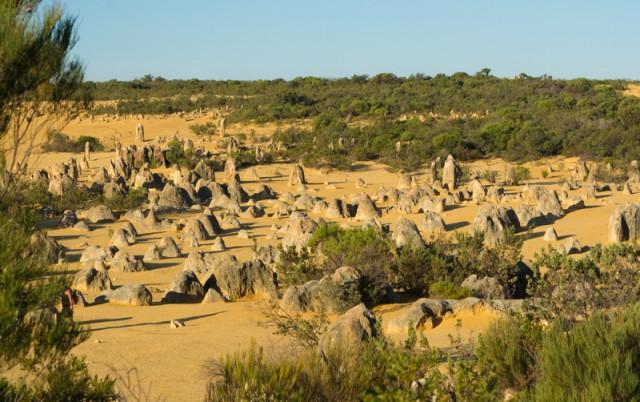 Пинаклс: пустыня остроконечных башенок. Австралия.
