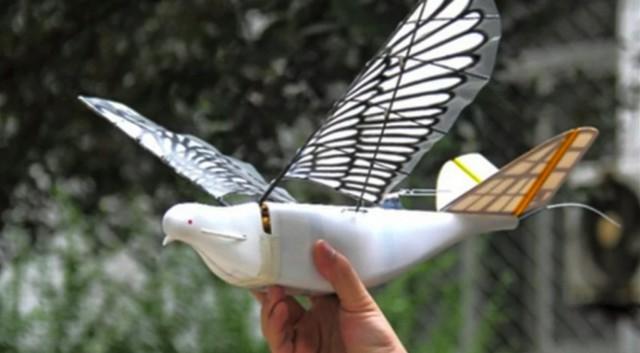 В Китае начали делать дроны, похожие на птиц. Для слежки за жителями?