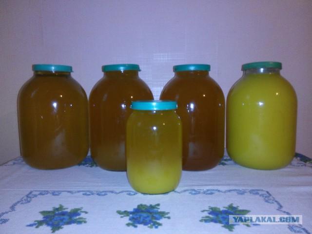 Мёд в Днепропетровске. Бесплатная доставка.