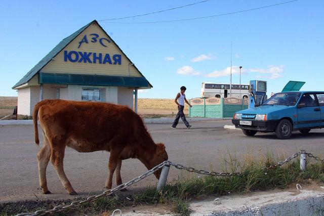 Бензин подорожает: надо строить дороги