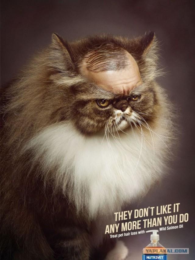 Лучшая креативная реклама уходящего года