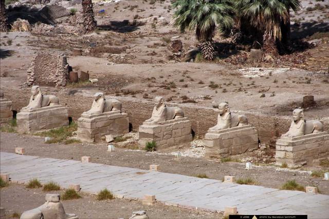 Новая находка в Египте на аллее между двумя грандиозными храмовыми комплексами