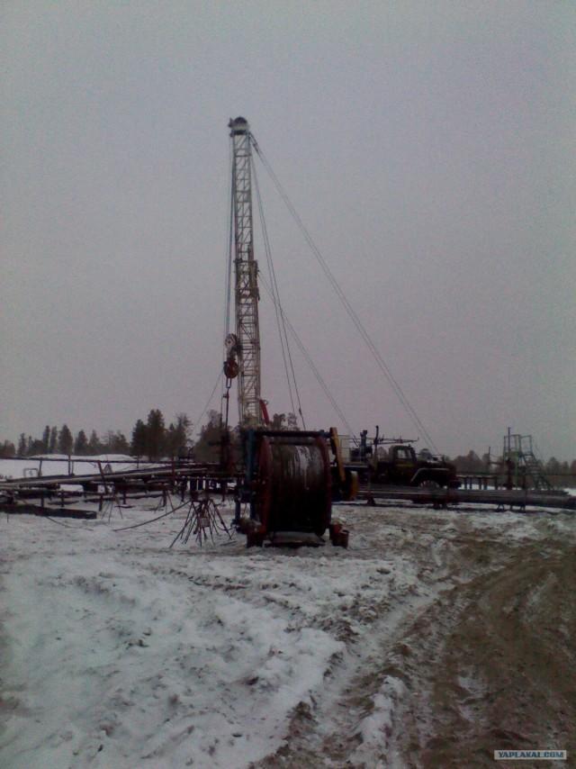 Крайний север. Нефть и газ