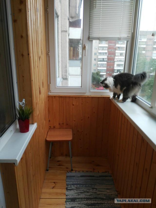 Кому квартиру в Челябинске?