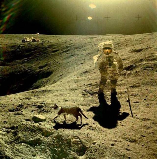 47 лет назад «Аполлон-11» совершил первую в истории посадку на Луну