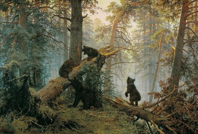 Утро в сосновом лесу (2 картинки)