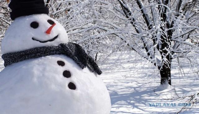 Группа депутатов от зелёных и либералов внесла законопроект запрещающий снеговиков только белого цвета