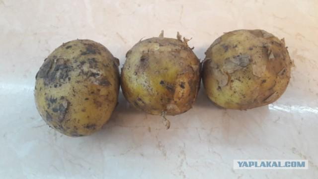 Это что за ерунда после варки картошки?