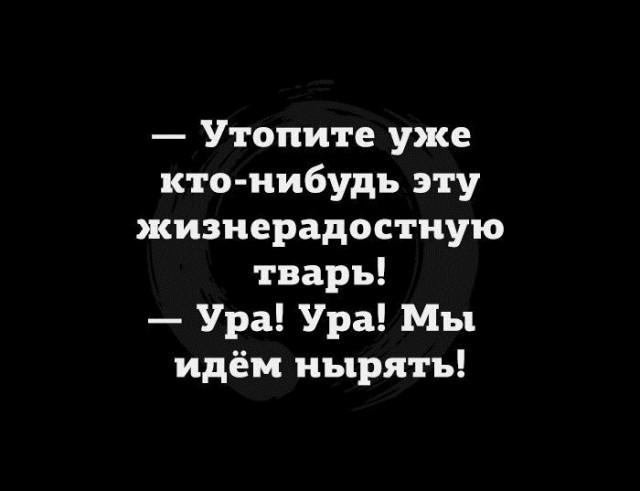 http://s00.yaplakal.com/pics/pics_preview/9/8/5/12925589.jpg
