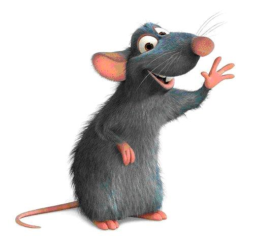 картинка для детей крыса