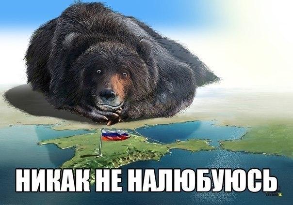 Картинки по запросу Медведь и Крым