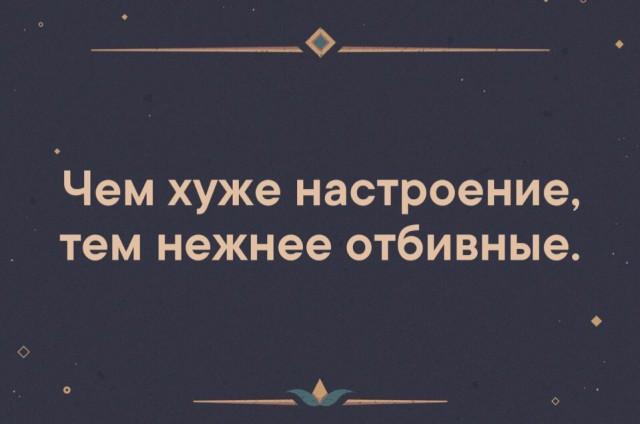 13860300.jpg
