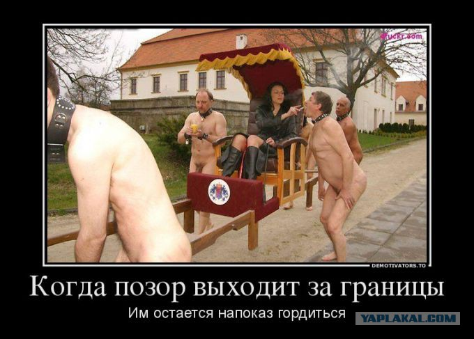 shou-konkurs-po-zasovivaniyu-dildo-na-glubinu-pizdi