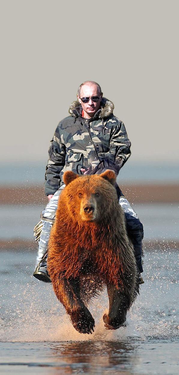 Путин верхом на медведе фото » Орбита Сети – интересные ...