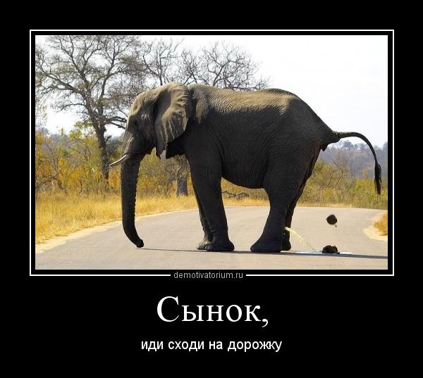 Картинки с надписью слоник