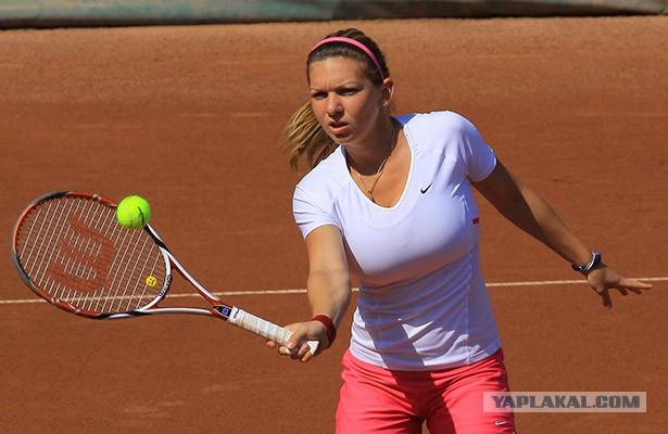 Сексуальные теннисистки на теннисном корте