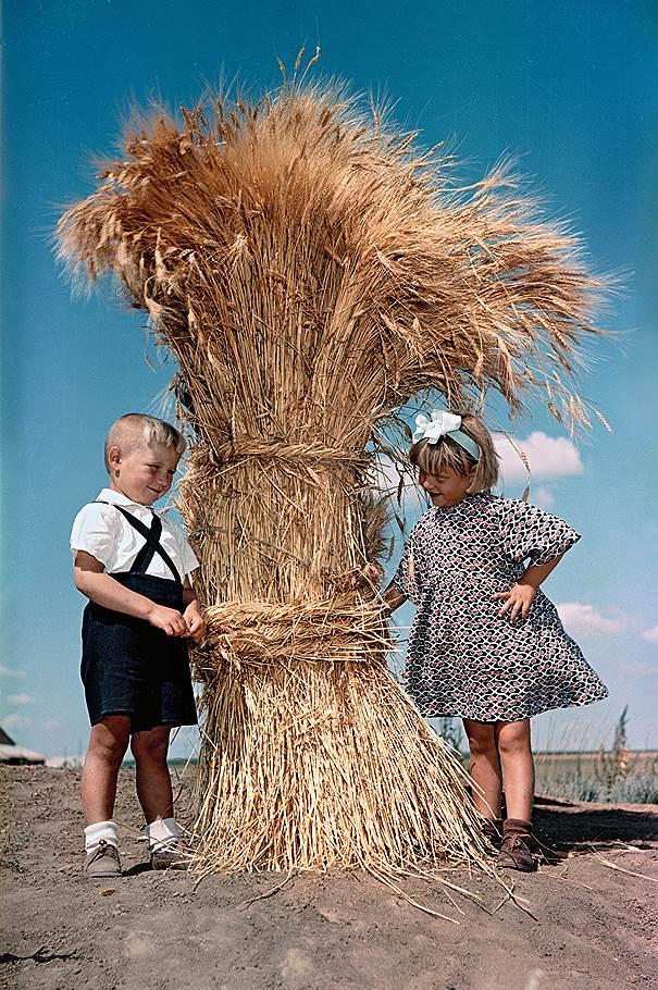 Освоение целины на цветных снимках из архива журнала «Огонек»