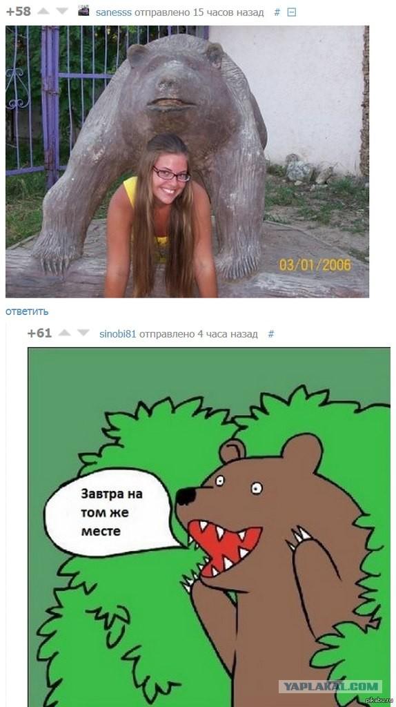 Все фото медведь кричит шлюха