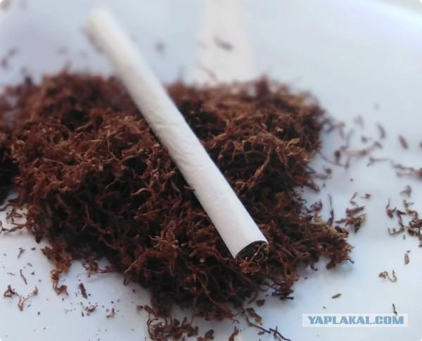 Купить табак на развес для сигарет форум москва гильзы для сигарет с фильтром 6 мм купить
