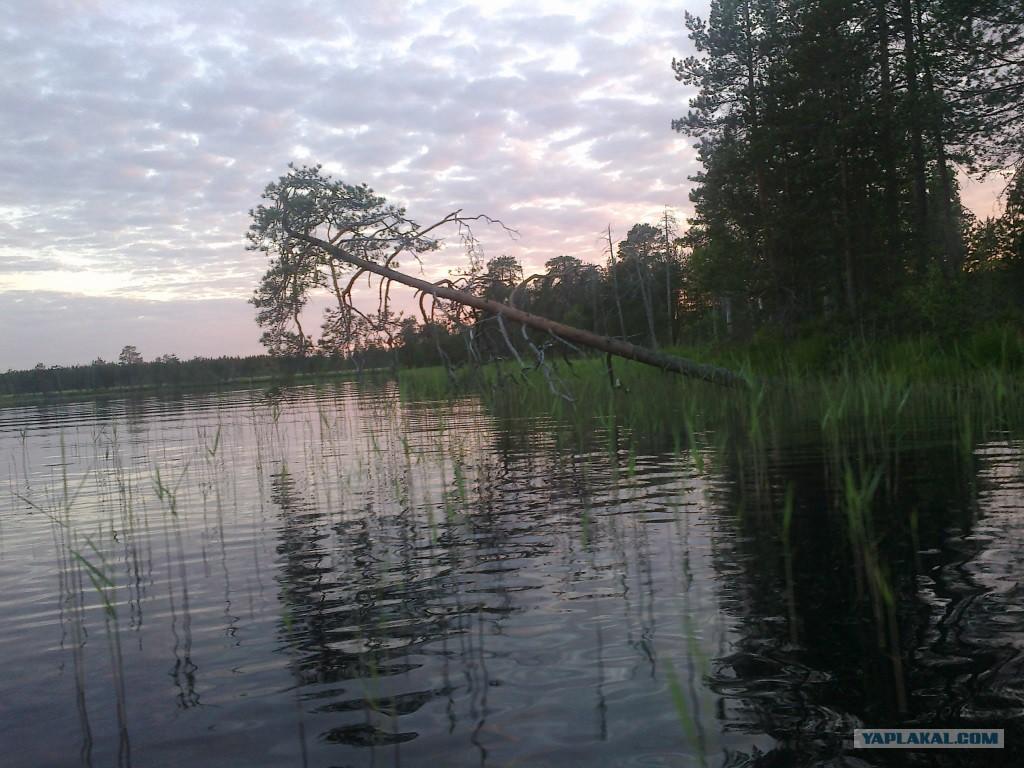 Рыбалка на глухом озере видео фото 405-575