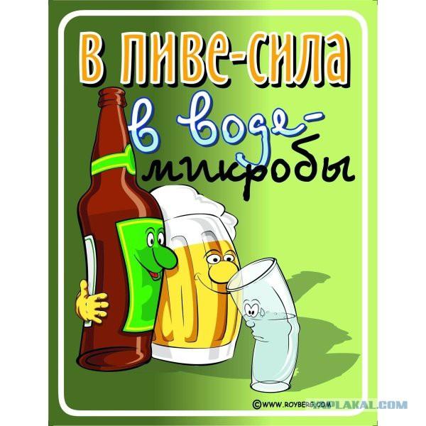 Пей пиво смешные картинки, марина днем днем