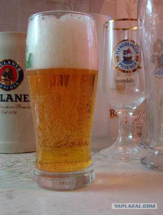 Пивной стакан спермы фото 10-998
