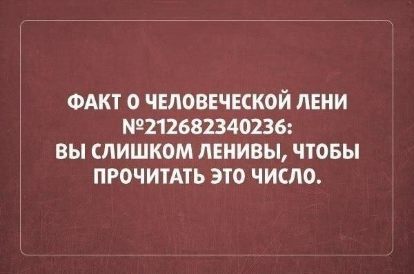 14803250.jpg