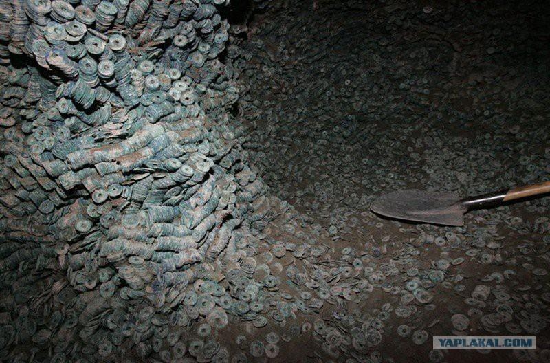 зарождается металл в земле фото для любого садовода